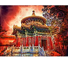 In the Garden of Forbidden City. Beijing. China. Photographic Print