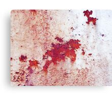 rust and old paint Canvas Print