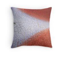 paint cracks Throw Pillow