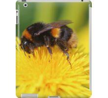 Buff-tailed Bumble Bee on Dandelion iPad Case/Skin
