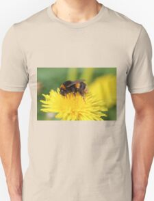 Buff-tailed Bumble Bee on Dandelion Unisex T-Shirt