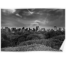 Central Park Canopy Poster