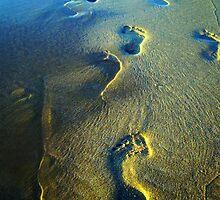 Footsteps by Matt O'Connor