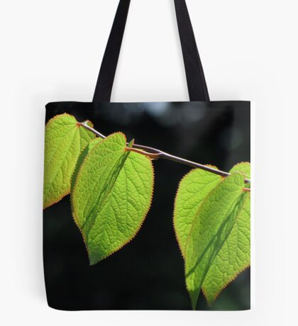Tetracendron Leaves Tote Bag