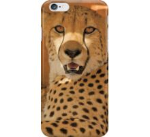 Cheetah (Acinonyx jubatus) iPhone Case/Skin