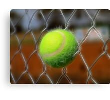 Electrified Fence Canvas Print