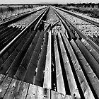 Tracks by Geoff Carpenter