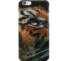 Tiger close up iPhone Case/Skin