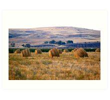 Coutryside landscape Art Print