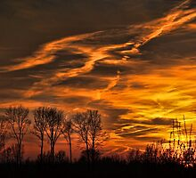 Fire in the sky by Gaby Swanson  Photography