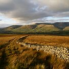 The Howgills by RoystonVasey