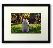 Stick em up ! Framed Print
