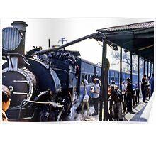Minature steam train, India Poster