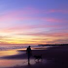Dogbeach silhouette by Claire Aberlé