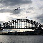 Sydney Harbor Bridge  by Jodie Bennett