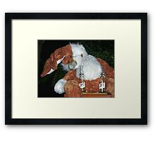 Silly Rabbit  Framed Print