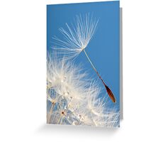 Almost free Greeting Card