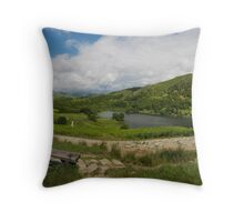 Rest and relax awhile........ Throw Pillow