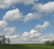 A beautiful day by Leslie  Lippert