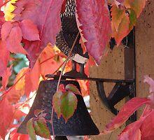Lamp hidden in Virginia Creeper by hotpotato