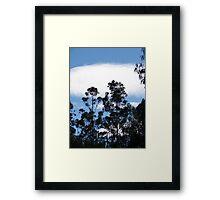 Blue Tree Skylines Framed Print