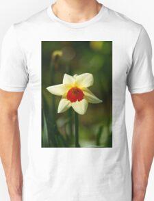 Backlit Narcissus T-Shirt