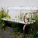 Forgotten bench  by martinspixs