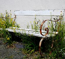 Forgotten bench  by martinspixs