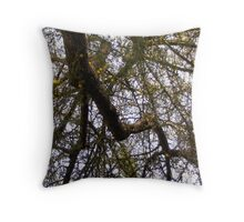 Complex Branches Cascading Downward Frame and Facet the Sky  Throw Pillow