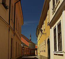 Narrow Street by Béla Török
