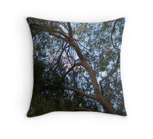 Curvilinear Branches Framing the Blue Sky  Throw Pillow
