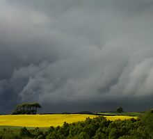 Storm Clouds by David Lewins