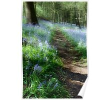 Bluebell Rise Poster