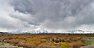 Stormy Day - Willow Flats Overlook - Teton National Park - Panorama by Stephen Beattie