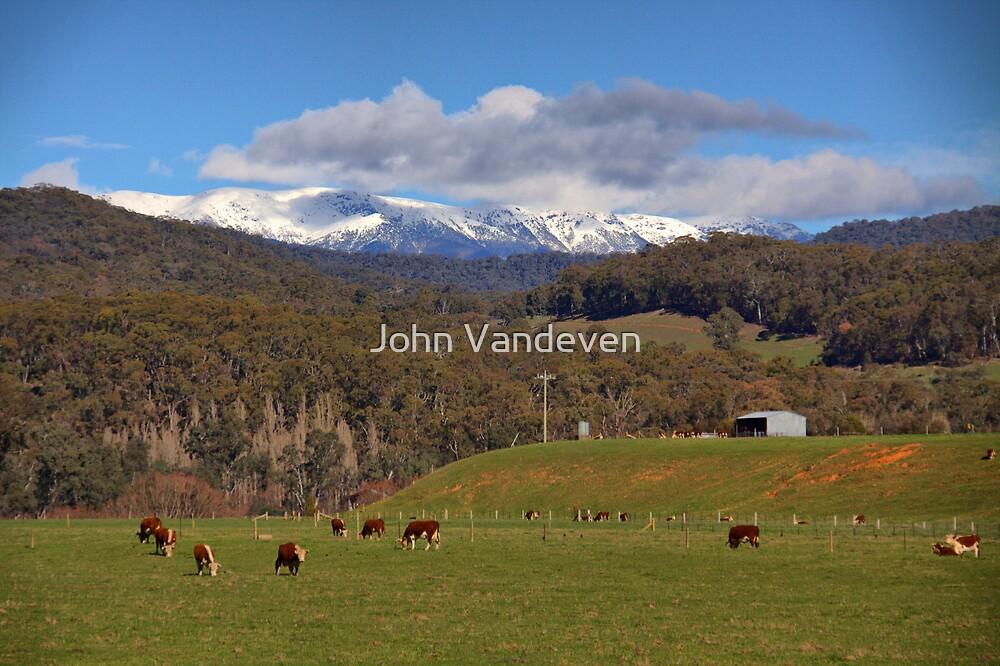 Country scene by John Vandeven