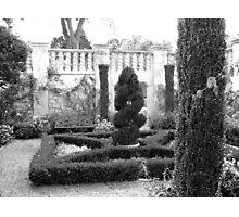 Dallas Arboretum Topiary Photographic Print