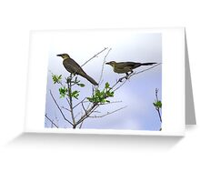 HIGH WIRE ACT Greeting Card