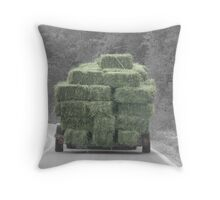 Hay there! Throw Pillow