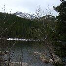 Bear Lake by heathernicole00