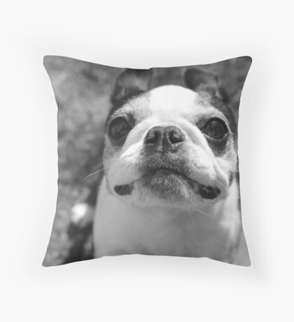 I'm Ready for My Closeup Throw Pillow