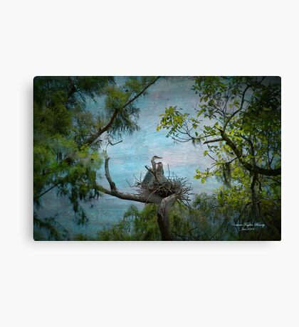 Help me make it through the night Canvas Print