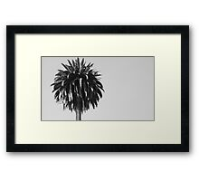 Soldout For The Shade Of The Palm Tree Framed Print
