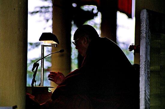 dalai lama. india, 2005 by tim buckley   bodhiimages
