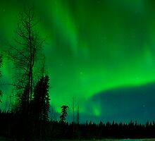 Last Winter's Auroras by peaceofthenorth