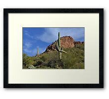 Saguaro Landscape Framed Print