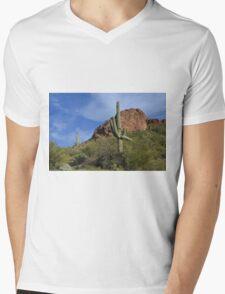 Saguaro Landscape Mens V-Neck T-Shirt
