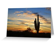 Saguaro Sunset 2 Greeting Card