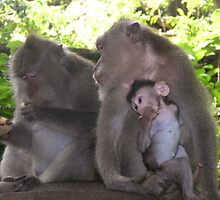 Monkey Family & Food by bevy111