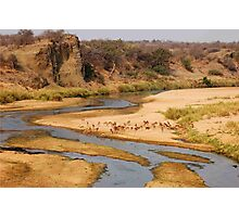 """Nature,Wildlife,Lanscape-capture - The Letaba River, """"KRUGER NATIONAL PARK"""" ,SOUTH AFRICA Photographic Print"""
