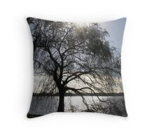Mid-winter by the lake Throw Pillow
